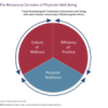 Physician Well-Being: The Reciprocity of Efficiency, Resilience, Wellness Culture