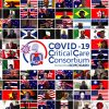 Global Effort to Collect Data on Ventilated Patients With COVID-19