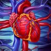 Predicting Mortality in Patients Undergoing VA-ECMO After CABG