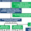 principles-of-antimicrobial-stewardship-for-bacterial-and-fungal-infections-in-icu